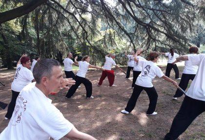 Pratica Taijiquan a Erba